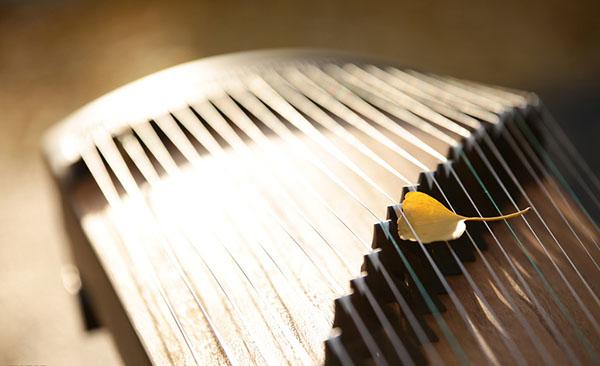 古筝—— 一对多 随到随学
