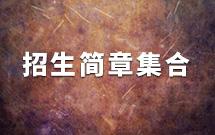 【金鹰艺术专修学校】2018年各大艺术类院校校考招生简章集合